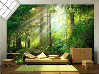 wall26 - Beautiful Forest Wallpaper- Canvas Art Wall Mural Decor - 100