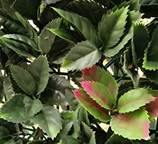 Porpora Artificial Hedge Plant, Greenery Panels Suitable for Both Outdoor or Indoor use, Garden, Backyard and/or Home Decorations by (European Holly 1 Sample Piece only)