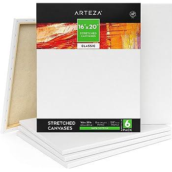 Arteza Lienzo para pintar cuadros | 40,64 x 50,8 cm | Pack de 6 | 100% algodón | Lienzos en blanco para óleo, acrílicos y acuarelas | para artistas profesionales, aficionados y principiantes: Amazon.es: Hogar