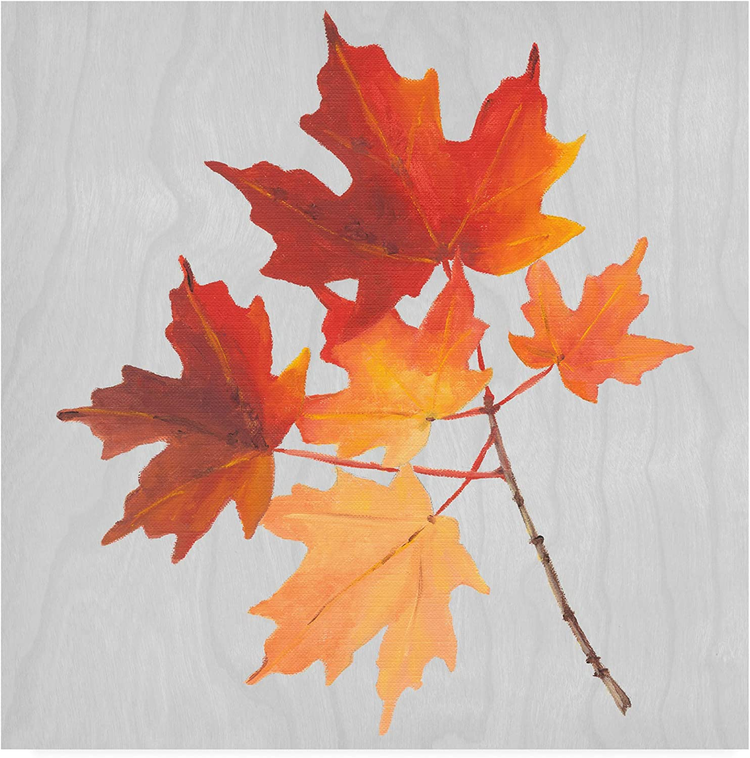 Trademark Fine Art Autumn Leaves IV by Dianne Miller, 14x14