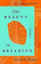 The Beauty in Breaking: A Memoir PDF