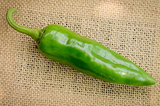 Numex Sandia New Mexico Hatch Chile Pepper Premium Seed Packet