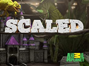 Scaled Season 1