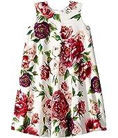 Dolce & Gabbana Kids - Knit Peonie Print Dress (Big Kids)