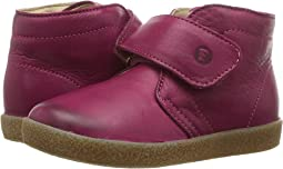 Naturino - Falcotto 1216 VL AW17 (Toddler)