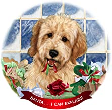 Best goldendoodle puppy ornament Reviews