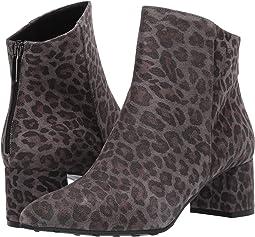Asfalt Cheetah