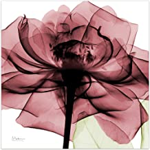 Empire Art Direct Chianti Rose II Flower Wall Art on Frameless Free Floating Tempered Glass Panel Ready to Hang,Living Room,Bedroom & Office, 24 in. x 0.2 in. x 24 in, Pink,White
