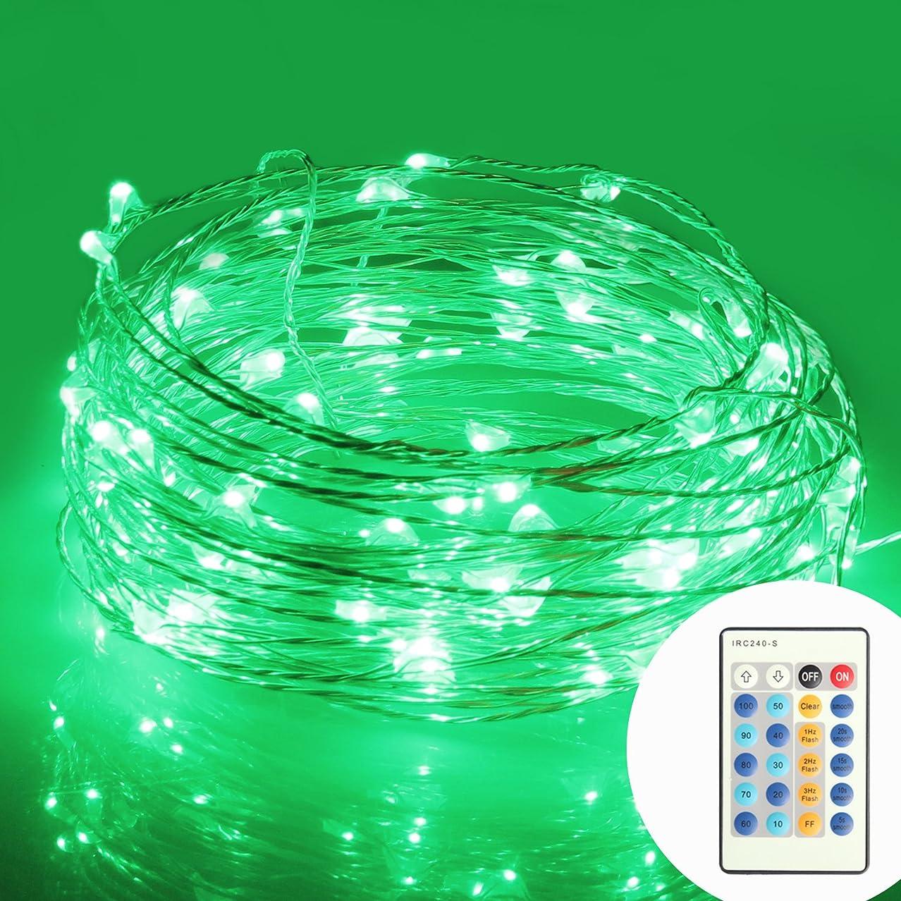許可意識的豊かにする(モニコ)MONIKO イルミネーション 防水 コントローラー付 省エネ LED パーティー用電飾 メリクリスマス飾り ストリングライト 100球10m (グリーン)