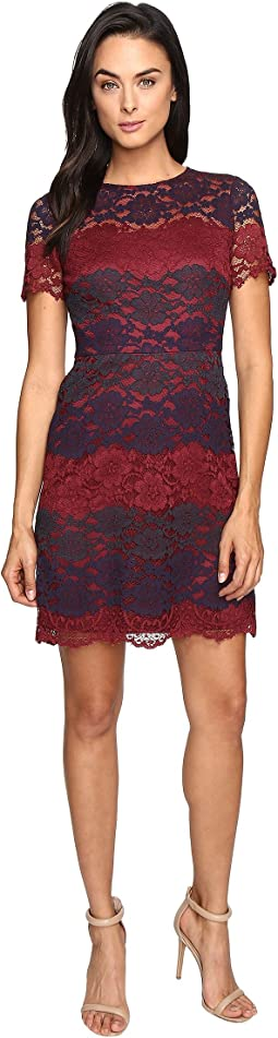 Tri-Color Lace Fit and Flare