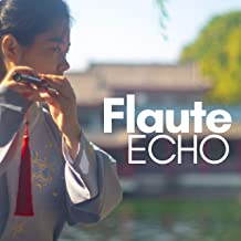 Flute Echo - Instrumental Spa Music for Wellness Centers & Hotels
