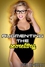 Augmenting The Secretary (The Magic Glasses: Remnant Part One) (English Edition)