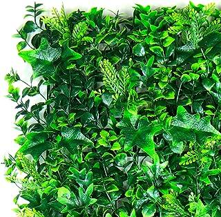 BE EVERGREEN FOLLAJE Sintetico, FOLLAJE Artificial, Muro Verde, Modelo Madrid 1 M2
