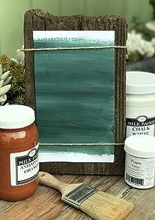 Sinopia All Natural Artisanal Milk Paint Sant'Anna Blue (5 Gallon)