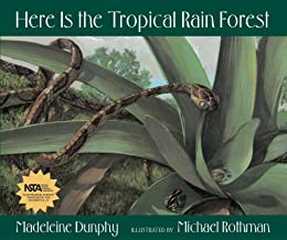 Here Is the Tropical Rain Forest (Web of Life, 1)
