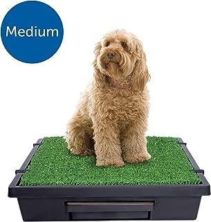 PetSafe Pet Loo Portable Pet Toilet Training Mat for Medium Dogs