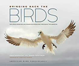 Bringing Back the Birds: Exploring Migration and Preserving Birdscapes throughout the Americas