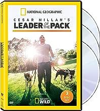 Cesar Millan: Leader / Pack Sn 1