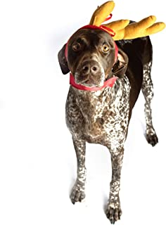 ComfyCamper Dog Reindeer Antler Headband Dog Costume for Halloween and Xmas, M