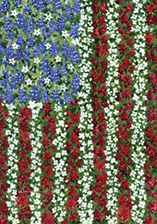 Toland Home Garden Field of Glory 28 x 40 Inch Decorative Floral America Patriotic Flower Summer House Flag