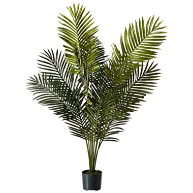 Nearly Natural 5ft. Paradise Palm Artificial plant, 46x44x60, Green