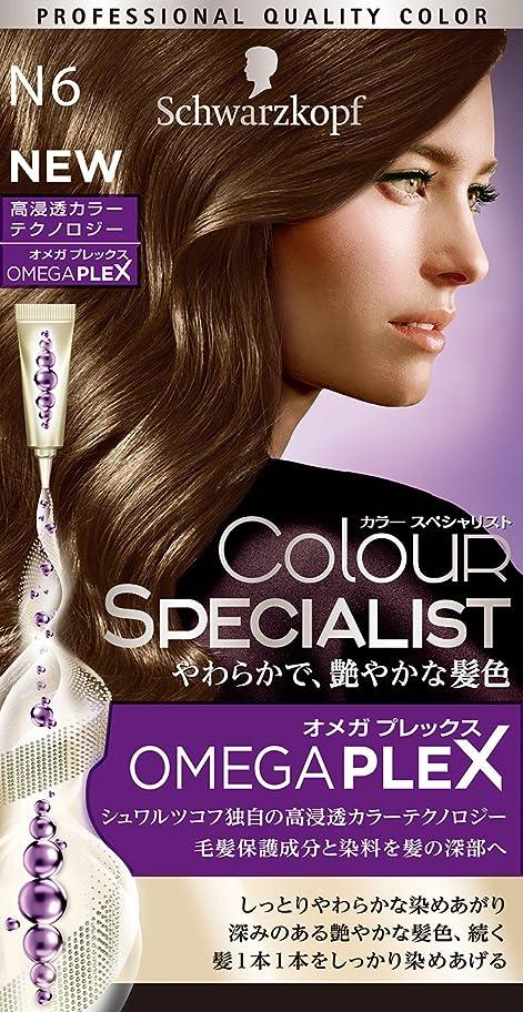 発表綺麗なピグマリオンシュワルツコフ カラースペシャリスト 白髪染め N6 ナチュラルブラウン