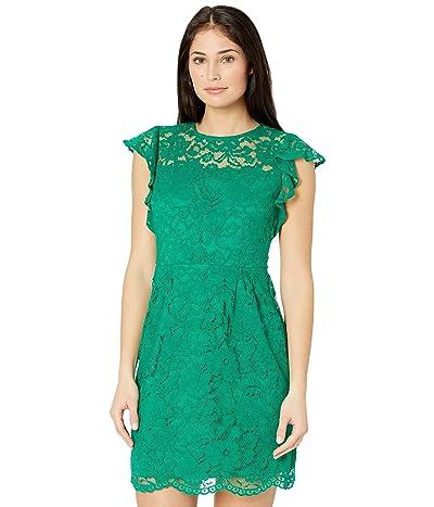 LAUREN Ralph Lauren Petite Sleeveless Day Dress