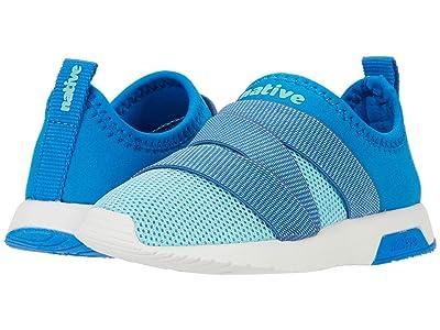 Native Kids Shoes Phoenix (Little Kid) (Megamarine Blue/Hydragea Blue/Shell White/Megamarine Blue) Kids Shoes