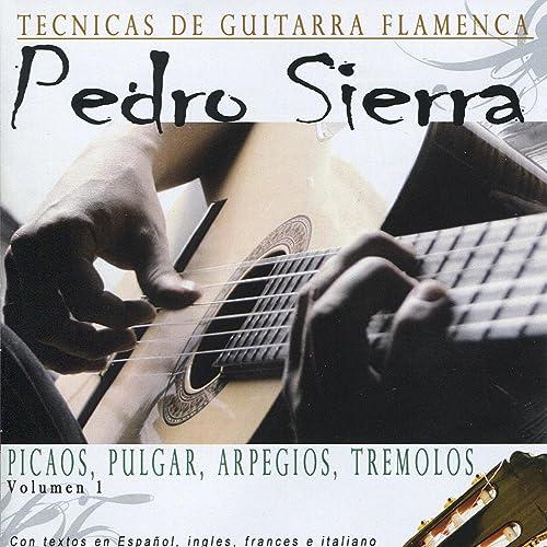 Tecnicas de Guitarra Flamenca de Pedro Sierra en Amazon Music ...
