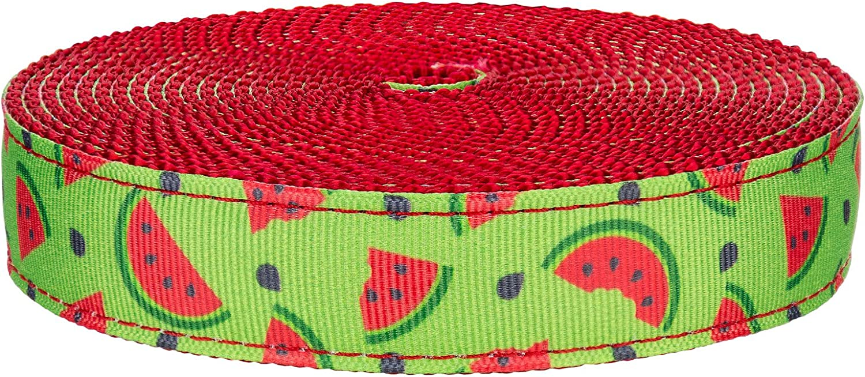 Country Brook Design - 3 4 Inch We Red on Crisp 春の新作 Nylon Watermelon 公式ストア