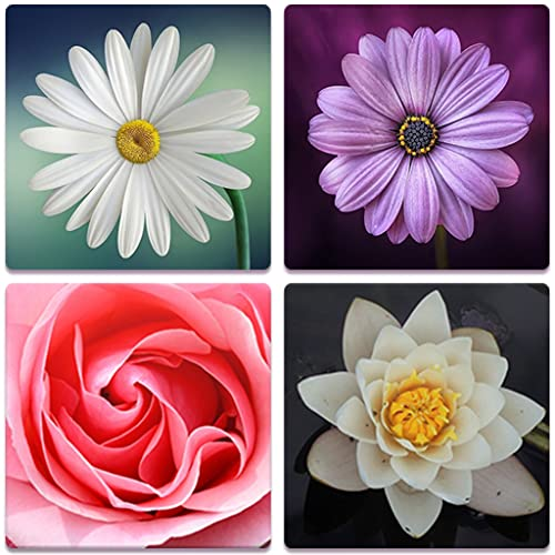 Flower Memory - Puzzle Brain Games For Adults, Kids And Seniors