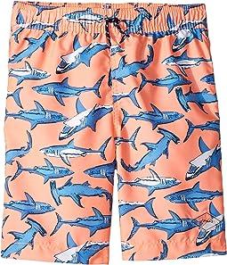Orange Shark