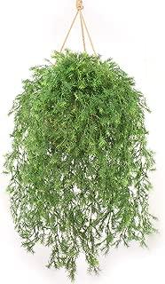 Larksilk Artificial Springeri Fern Vine Hanging Ivy Plants, 31