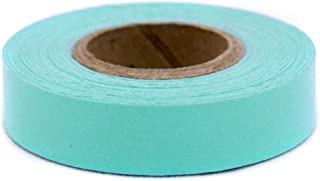 ChromaLabel 1/2 inch Color-Code Labeling Tape | 500 inch Roll (Aqua)