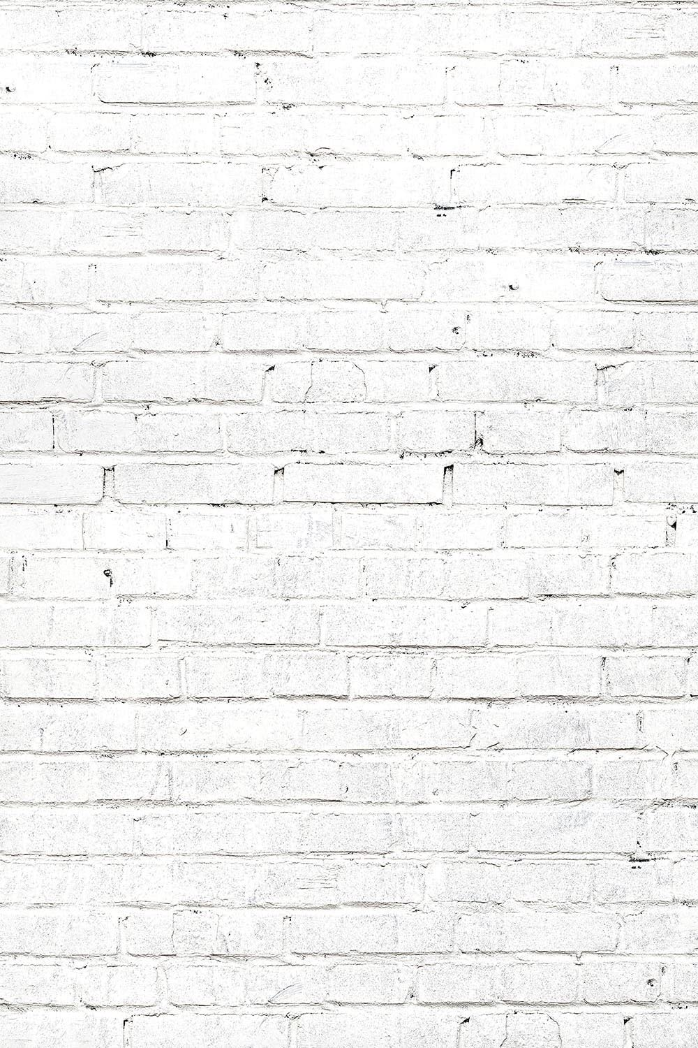 Savage Printed Background Paper Brick shop At the price of surprise White -