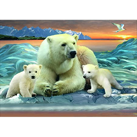 Kaliosy 5D DIY Diamond Painting by Number Kits Polar Bear Paint with Diamonds Arts Full Drill for Bedroom Living Room Decor 40X40 cm X407