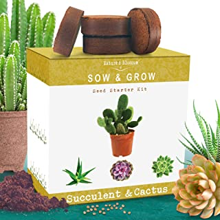Nature's Blossom Succulent and Cactus Growing Kit. A Complete Garden Starter Set To Grow Your Own Succulents and Cacti Plants From Organic Seeds. Indoor Gardening Guide Included