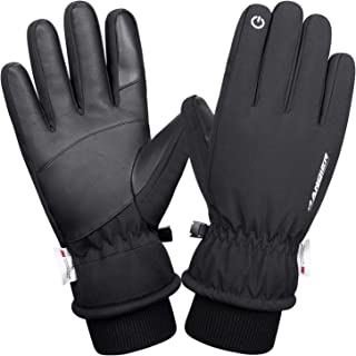 Lapulas Mens Winter Gloves Waterproof Womens Running Gloves Touchscreen Thermal Windproof Warm Gloves for Cycling Riding Driving Climbing