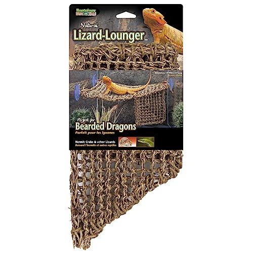Bearded Dragon Bedding: Amazon com