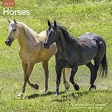 Horses Wall Calendar (2019)