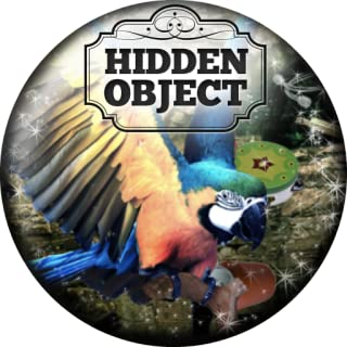 Flying with Colours  Hidden Object