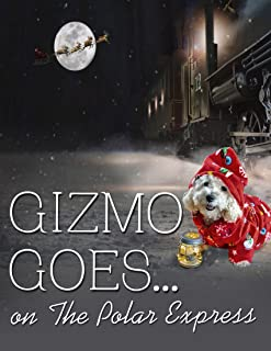 Gizmo Goes on The Polar Express