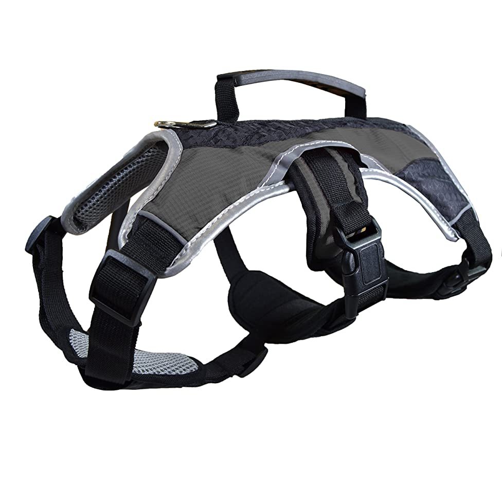 Dog Walking Lifting Carry Harness, Support Mesh Padded Vest, Accessory, Collar, Lightweight, No More Pulling, Tugging or Choking, for Puppies, Small Dogs (Sizes: X-Small, Small, Medium & Large)