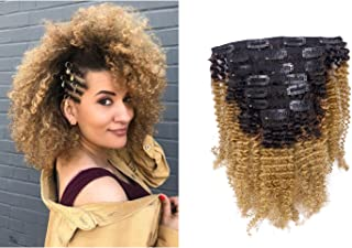 Anrosa Virgin Hair Afro Kinky Clip ins Human Hair Extensions Kinky Curly Clip in Natural Hair Extensions for African American Black Women Brazilian 3C 4A 4B Curly Hair Ombre Brown Blonde 120g 12 Inch