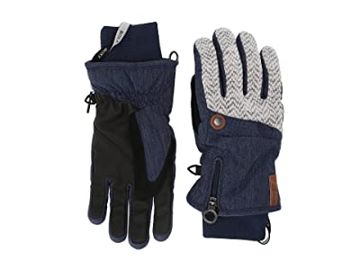 Roxy Nymeria Snow Gloves (Mid Denim) Ski Gloves