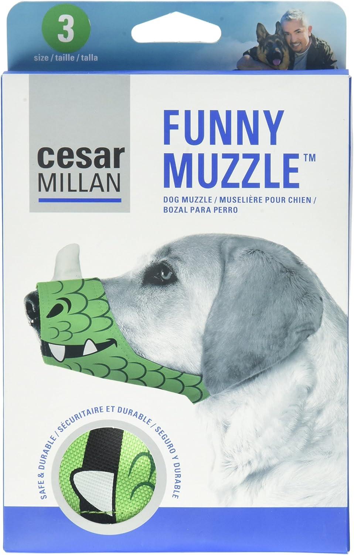 Cesar Millan Friendly Muzzle