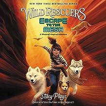 Wild Rescuers: Escape to the Mesa: The Wild Rescuers Series, book 2
