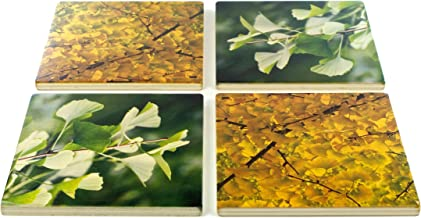 product image for Set of 4 Gingko Wooden Coasters - Green and Yellow Gingko Leaves