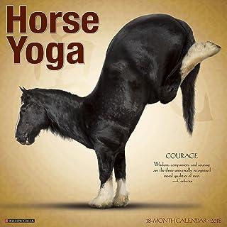 Horse Yoga 2018 Wall Calendar: Amazon.es: Willow Creek Press ...