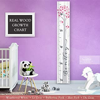 Wooden Kids Growth Height Chart Ruler for Boys and Girls Painted (The Bentley) by Back40Life - Express Edition